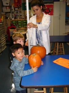 web - desi pumpkin measuring